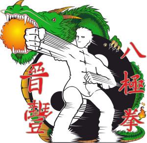 FENG CHIN Ba Ji Quan